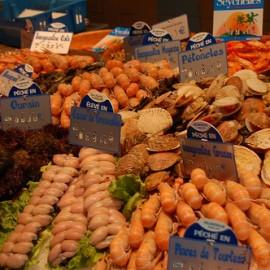 Le calendrier des fruits de mer