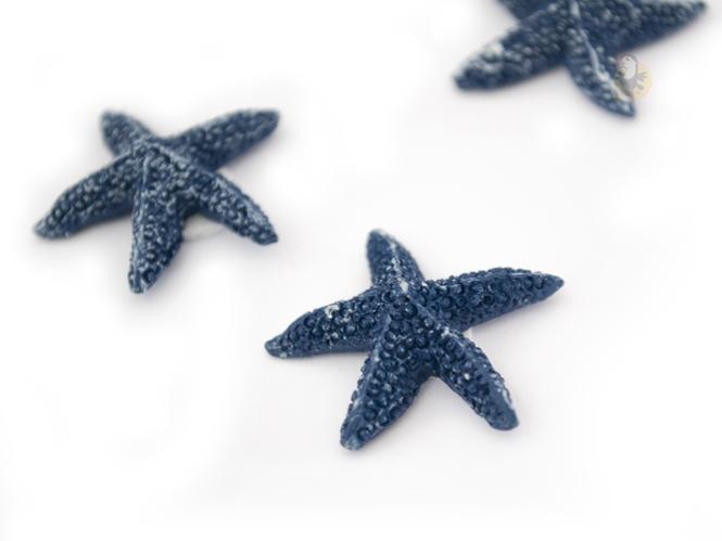 etoile-mer-bleue-decoration