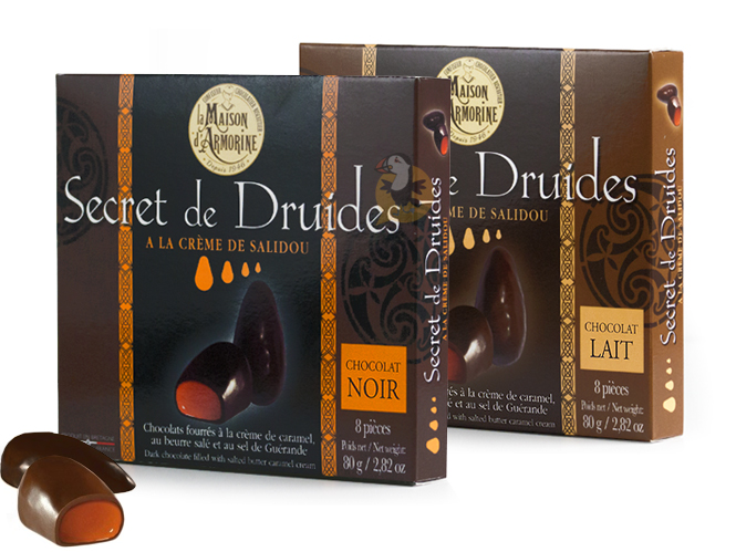 chocolat-secret-druides