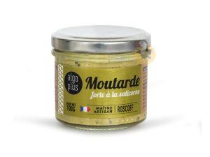 Moutarde forte à la salicorne Algoplus